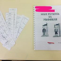 Cahier de réussite et fichier de progrès
