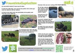 Défis #racontemoilagriculture