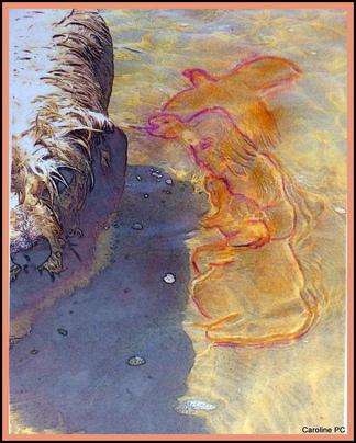 33- Un message dessiné dans l'eau sur une photo