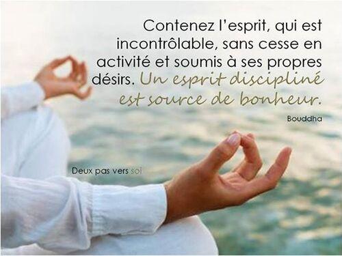 L'esprit discipliné
