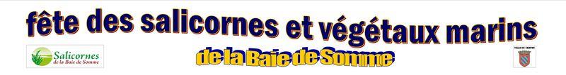 bache_def