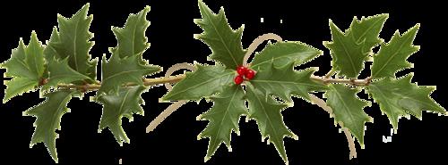 Ornements de Noël Série 23