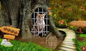 Jouer à 8B Crazy fox escape