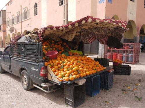 Des bonnes oranges à profusion