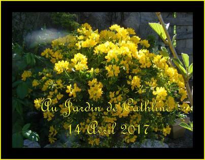 Jardiner avec la Lune du 21 au 30 Avril