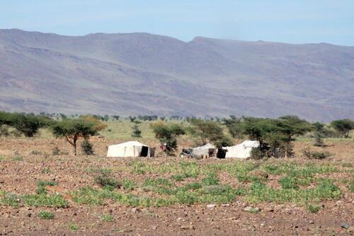 Les tentes nomades
