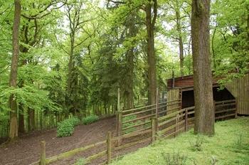 Parc animalier Bouillon 2013 enclos 236
