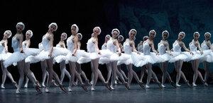 dance ballet class swan lake ballet