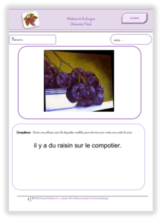 le raisin, lecutre de phrases