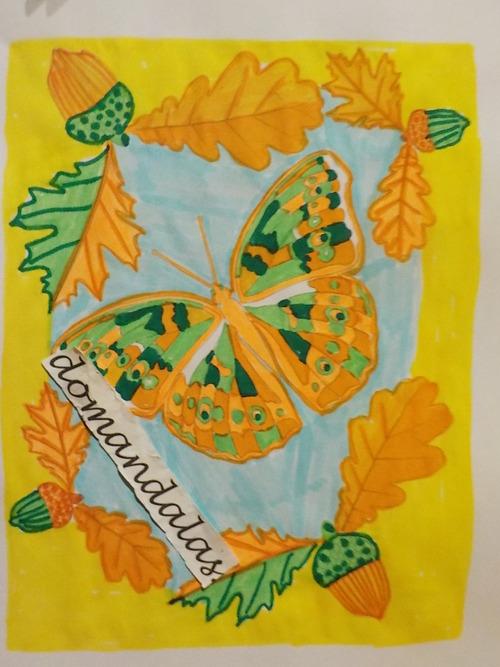 DOMANDALAS coloriage papillon d'hiver