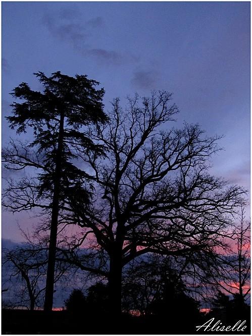 ciel 09 12 2011 8h03
