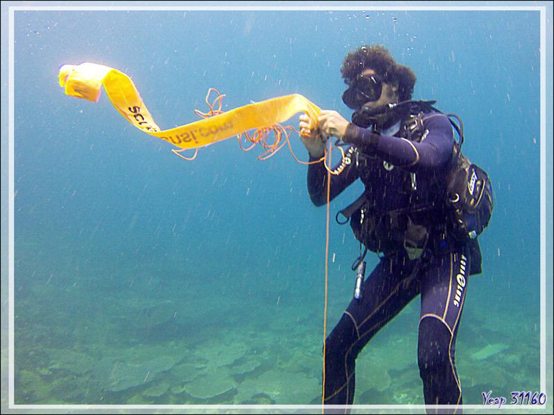 """La plongée se termine, la partie pénible commence : le palier, """"5 mn / 3 m"""", sauf quand une méduse vient égayer ce temps d'attente - Nosy Mitsio - Madagascar"""