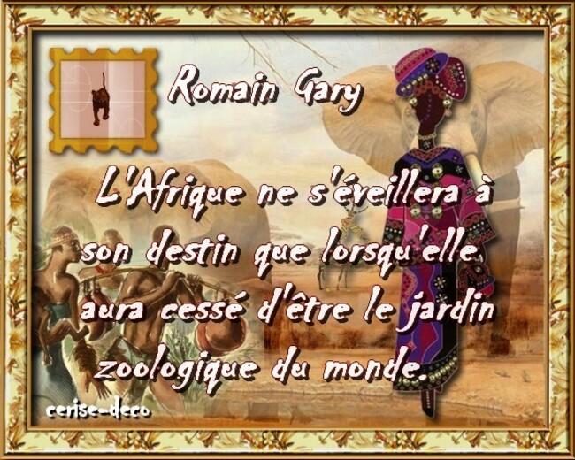 citation afrique