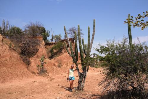 De Neiva au désert de Tatacoa