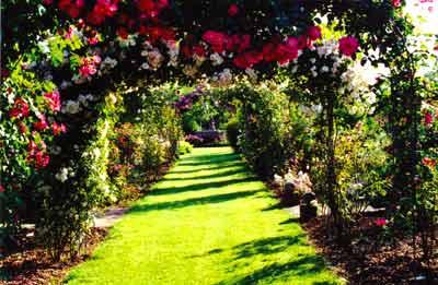 Le parc de la roseraie du Chatelet