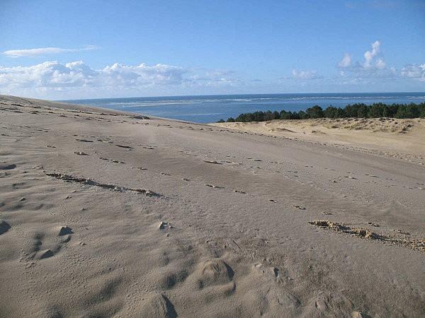 dune du Pyla, 1er pallier pour la vue
