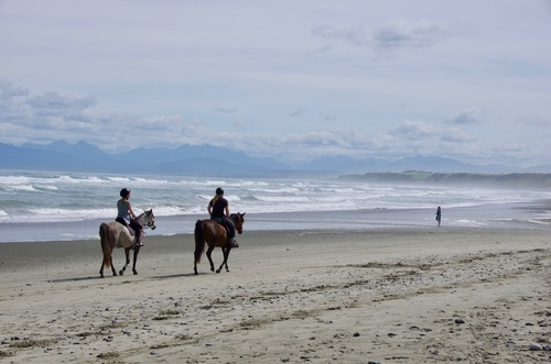 Nouvelle-Zélande #12 - de Bluff à Te Anau