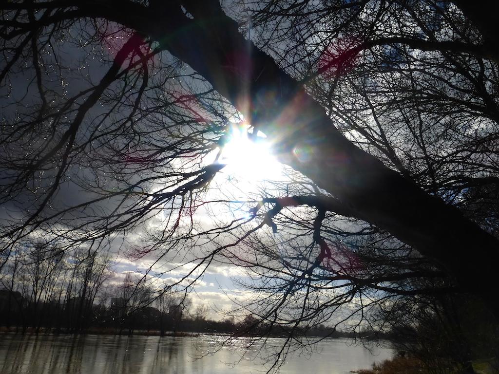 """Balade en bord de Loire: """"sol y sombra""""!"""