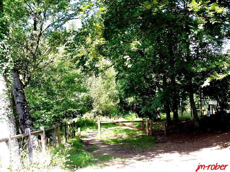 Limoges/Banlieue: Promenons nous dans les bois
