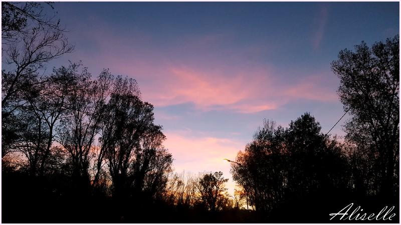 Ciels de fin novembre