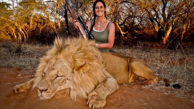 Une présentatrice tue un lion