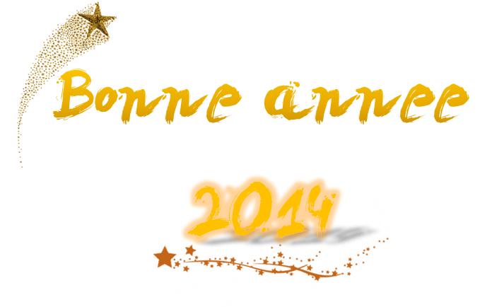 Bonne année 2014 !!!!