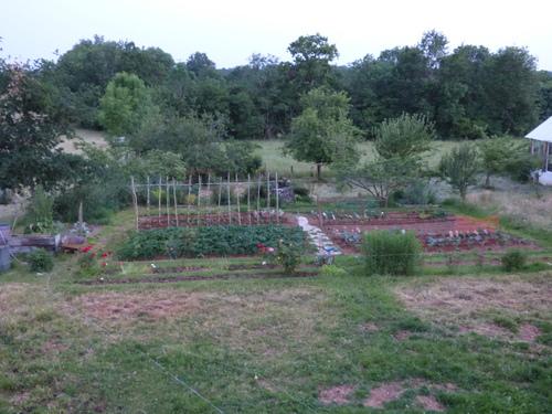Le jardin en plein essor!