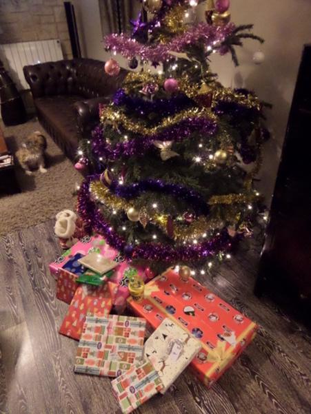 Blog de comu : Le monde de Coco, Joyeux Noël!