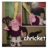 chricket