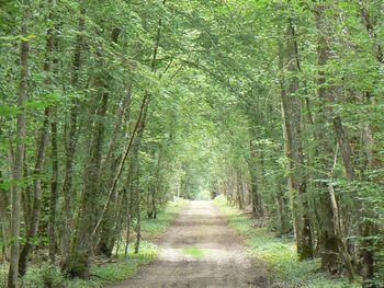 Circuit des vallées et des bois