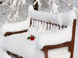 Bonjour Monsieur l'hiver ...