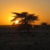 398 Mauritanie Dernier bivouac avant frontière