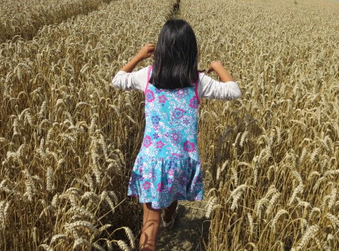http://3.bp.blogspot.com/--zzK5nAsL_Q/VBHxBubcoII/AAAAAAAAAi8/s8OHXJbH3SA/s1600/elbow+high+wheat.jpg