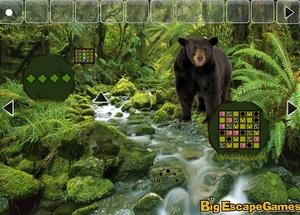 Jouer à Big Bear land escape