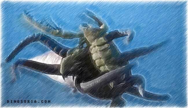 Combat entre un scorpion de mer et un orthoceras