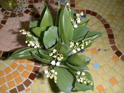 photo du muguet du jardin BON PREMIER MAI