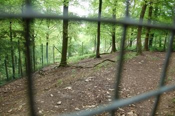 Parc animalier Bouillon 2013 enclos 274
