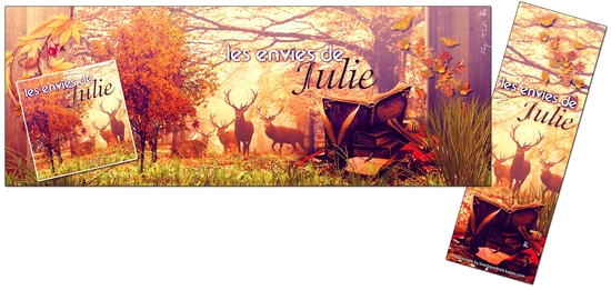 Pack fb les envies de Julie