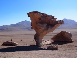 L'arbol de Piedra