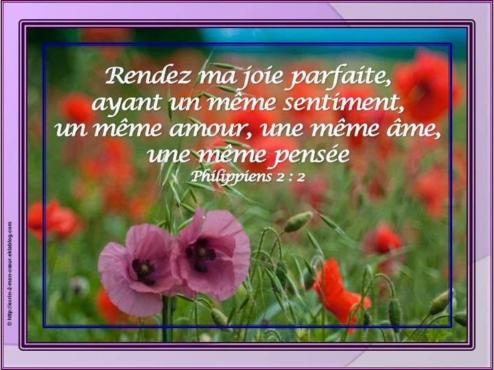 Rendez ma joie parfaite - Philippiens 2 : 2