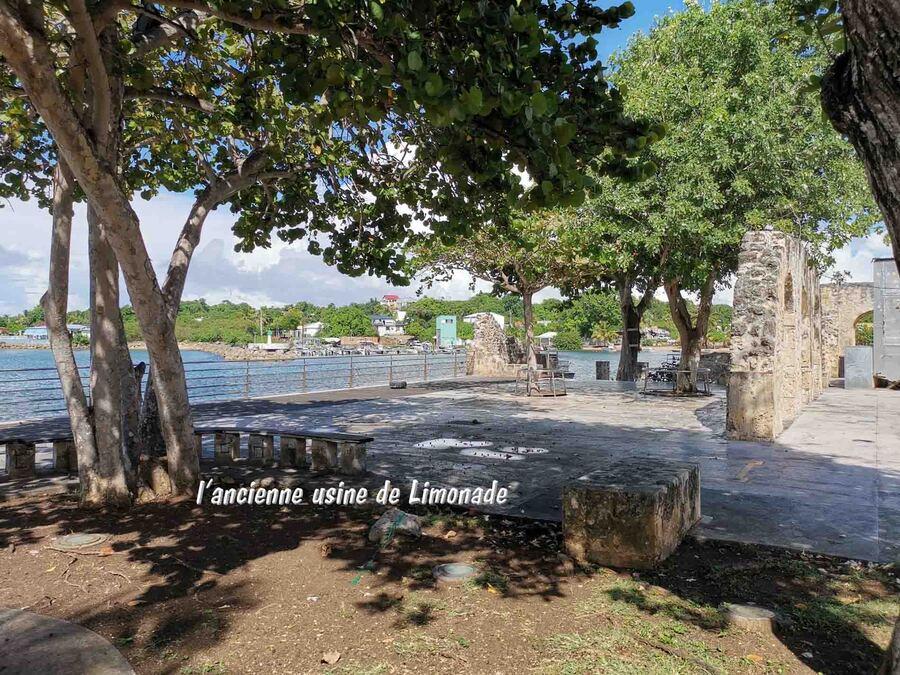 « La Guadeloupe –L'Île papillon 1 »
