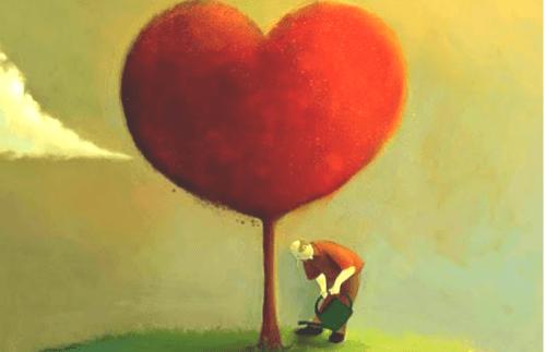 homme arrosant un arbre en forme de coeur