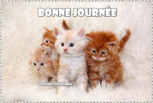 bonnejournee074