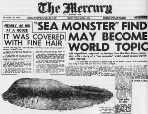 Cryptozoologie:  Le monstre de Tasmanie