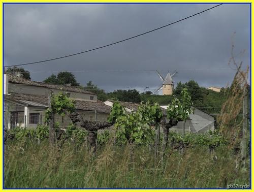 Pessac - Côtes de Bourg