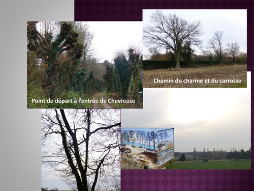Randonnée à Chevreuse, Saint-Lambert-des-Bois (10 km)