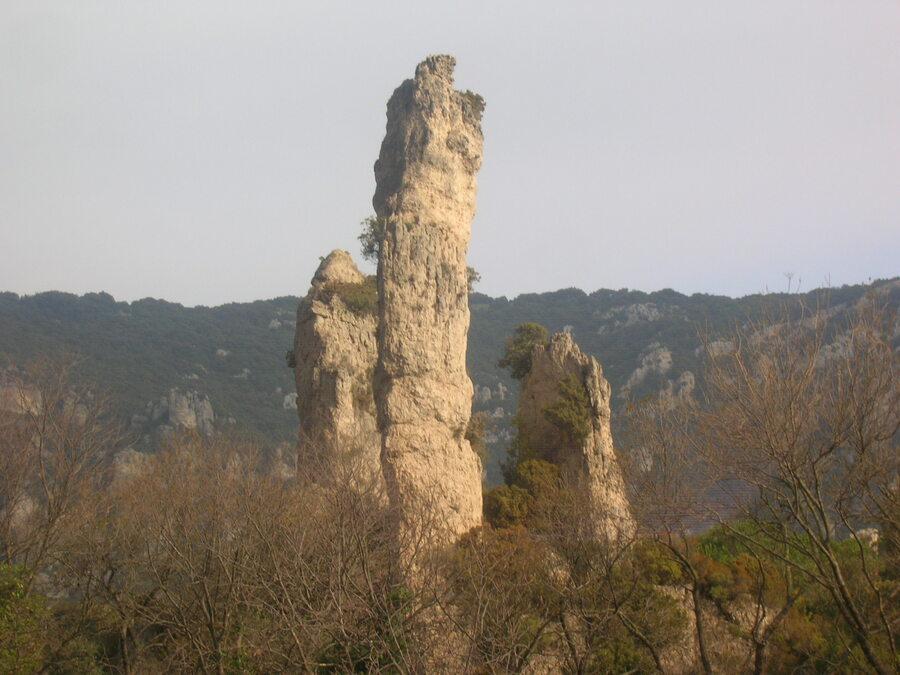 LES  CEVENNES  en février 2008