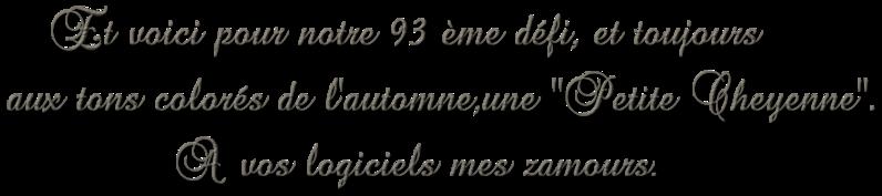 Défi 93