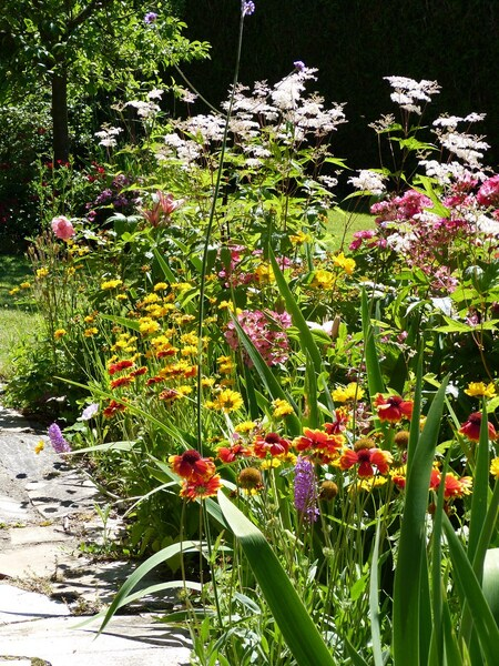 Le jardin de Claudine