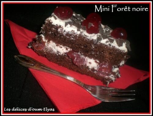 Mini-Foret-noire--14-.JPG